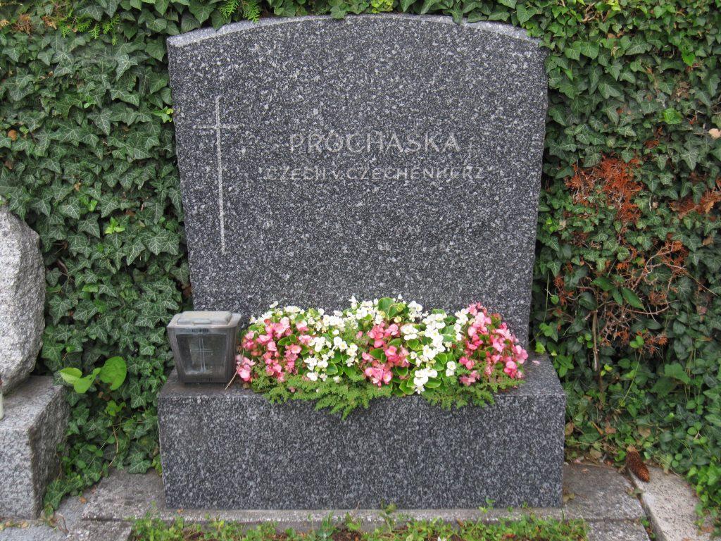 Dr. Stefanie PROHASKA - NADHERNI